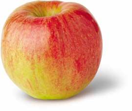 My apple, my honeycrisp.